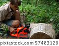 Lumberman work wirh chainsaw in the forest 57483129