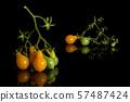 Yellow pear tomato isolated on black glass 57487424