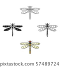 Dragonfly icon in cartoon,black style isolated on white background. Insects symbol stock vector 57489724