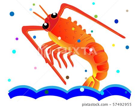 鮮蝦 57492955