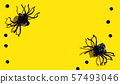 Halloween black spiders 57493046