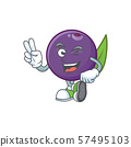 Two finger acai berries cartoon character for health 57495103