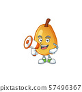 With megaphone fragrant pear in cartoon character style 57496367