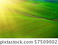 Rural landscape with road 57509002