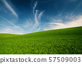 Abstract natural background 57509003