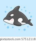 Killer whale orca cartoon hand drawn style 57512118