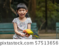 Portrait Asian child girl is feeding bird 57513656