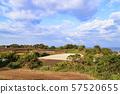 밭 (가을) 57520655