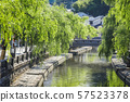 River and bridge flowing through Kinosaki hot spring town and fresh green willow trees 57523378