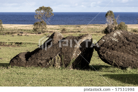 Moai Statues on Easter Island at the Rano Raraku Quarry 57531998