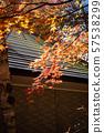 轻井泽别墅,秋叶,最佳时间看,秋天的形象,美丽的风景,美丽的照片,旅游 57538299