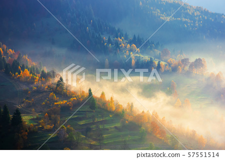 glowing fog in the morning 57551514