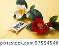 造(人造花) 57554546