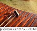 Thai gamelan, musical xylophone, Thai musical 57559160
