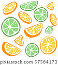 The pattern of green lime and yellow lemon. the part of lemon and lime. the pattern of yellow lemon on the white background. The cute lime and lemon in flat vector style. 57564173