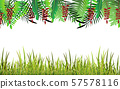 green grass and plant on the white background 57578116