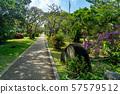 오키나와 미야코 섬 미야 코지마시 열대 식물원 산책로 57579512