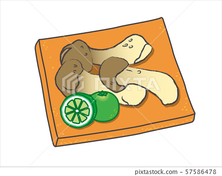 Matsutake / pine mushroom 57586478