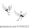 兩個紅冠鶴擺姿勢 57593333