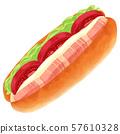 샌드위치 믹스 샌드 베이컨 토마토 상추 핫도그 번 57610328