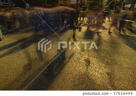 보행자 도시의 풍경 경제 경제 시부야 시부야 교차로 저녁 57616449