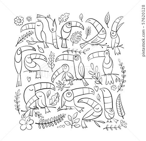 Exotic birds to color - toucan coloring page | 450x468