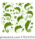 Chameleon collection, sketch for your design 57624354