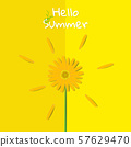 Yellow cosmos on yellow background, summer time concept vector illustration 57629470