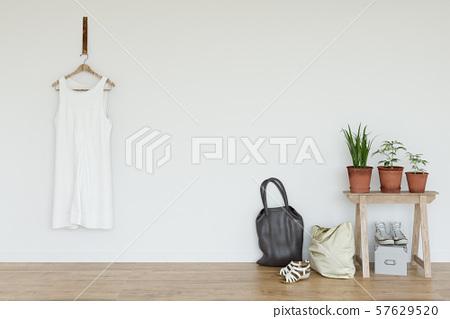 Inteia雜貨 57629520
