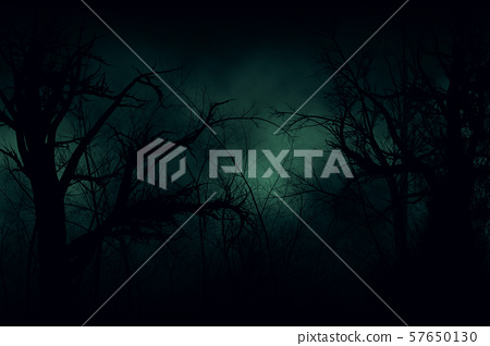 Dark forest 57650130