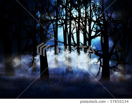 Dark foggy forest 57650134