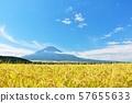 Autumn blue sky, rice field and Mt. Fuji 57655633