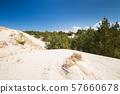 Sand dunes Leba 57660678