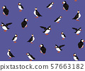 Arctic Puffins seamless pattern. 57663182