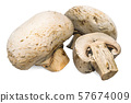 Champignon mushrooms 3d rendering 57674009