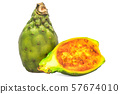Cactus pear 3d rendering with realistic texture 57674010
