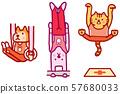 動物角色體育奧運競賽體操 57680033