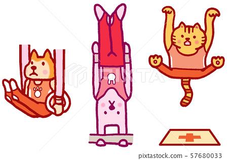 동물 캐릭터 스포츠 올림픽 체조 57680033