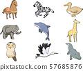 动物和动物 57685876