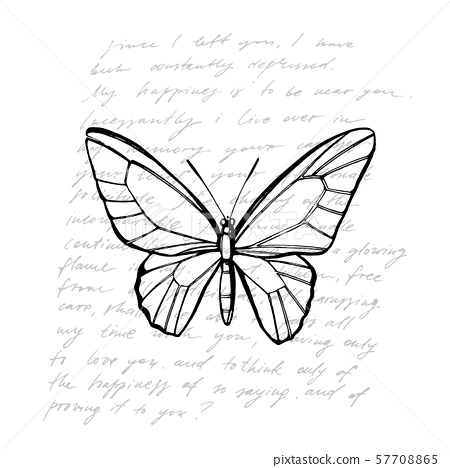 Butterflies silhouettes. Butterfly icons isolated on white background. Graphic illustration 57708865