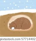 一隻熊要冬眠 57714402