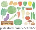 야채 세트 수채화 풍의 일러스트 57716027