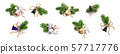 Christmas decoration. Xmas Bouquets and wreaths 57717776