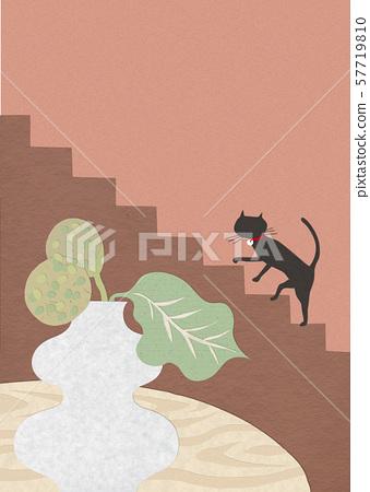 Interior illustration everyday cat 57719810