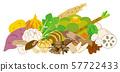 가을 야채 57722433