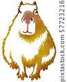 抠出水豚棕色 57723216