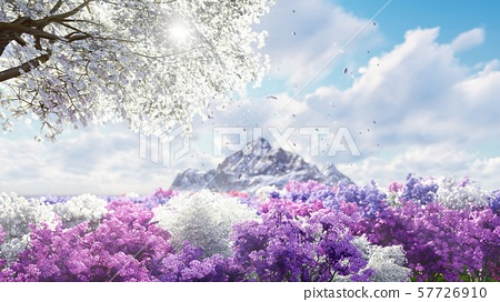 A sakura blooms in spring on the background of mountains and fields of flowers. Travel and adventure 57726910