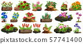 Large set of colorful flowers on rocks and wood 57741400