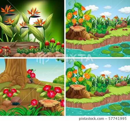 Set of background scene with nature theme 57741995