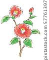 Four seasons flower 57761397